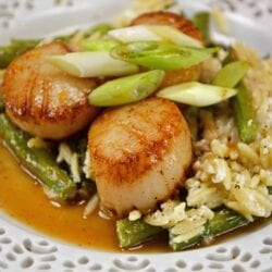 Orange Caramel Scallops are an easy recipe that brings the feel of the restaurant right to your home! Scallops covered in a sticky, sweet orange caramel sauce! #scallopsrecipe #seascallopsversusbayscallops www.savoryexperiments.com