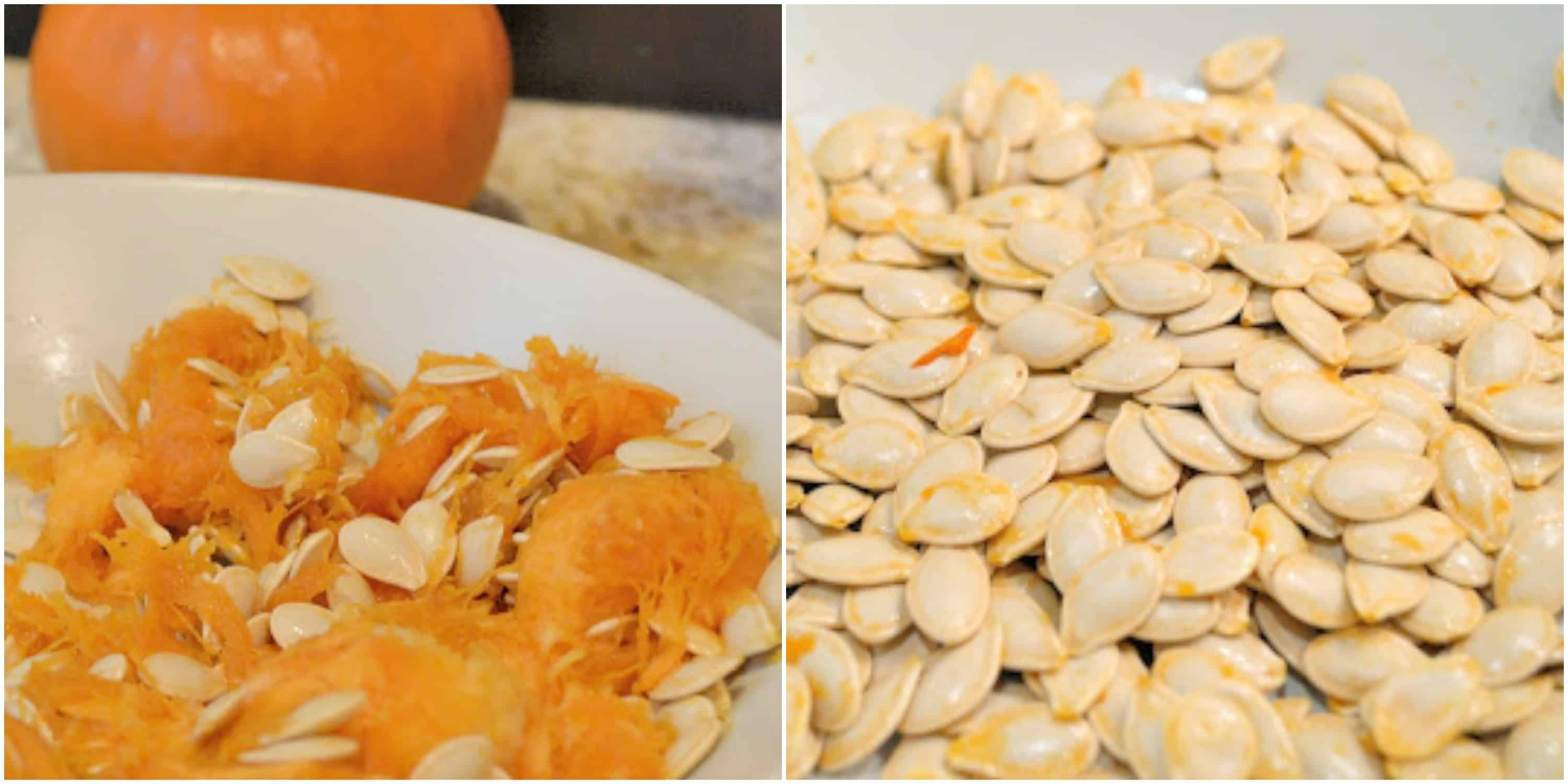 "Chances are you are Googling ""how to make salted pumpkin seeds"" and you came across my Roasted Pumpkin Seeds Recipe!"