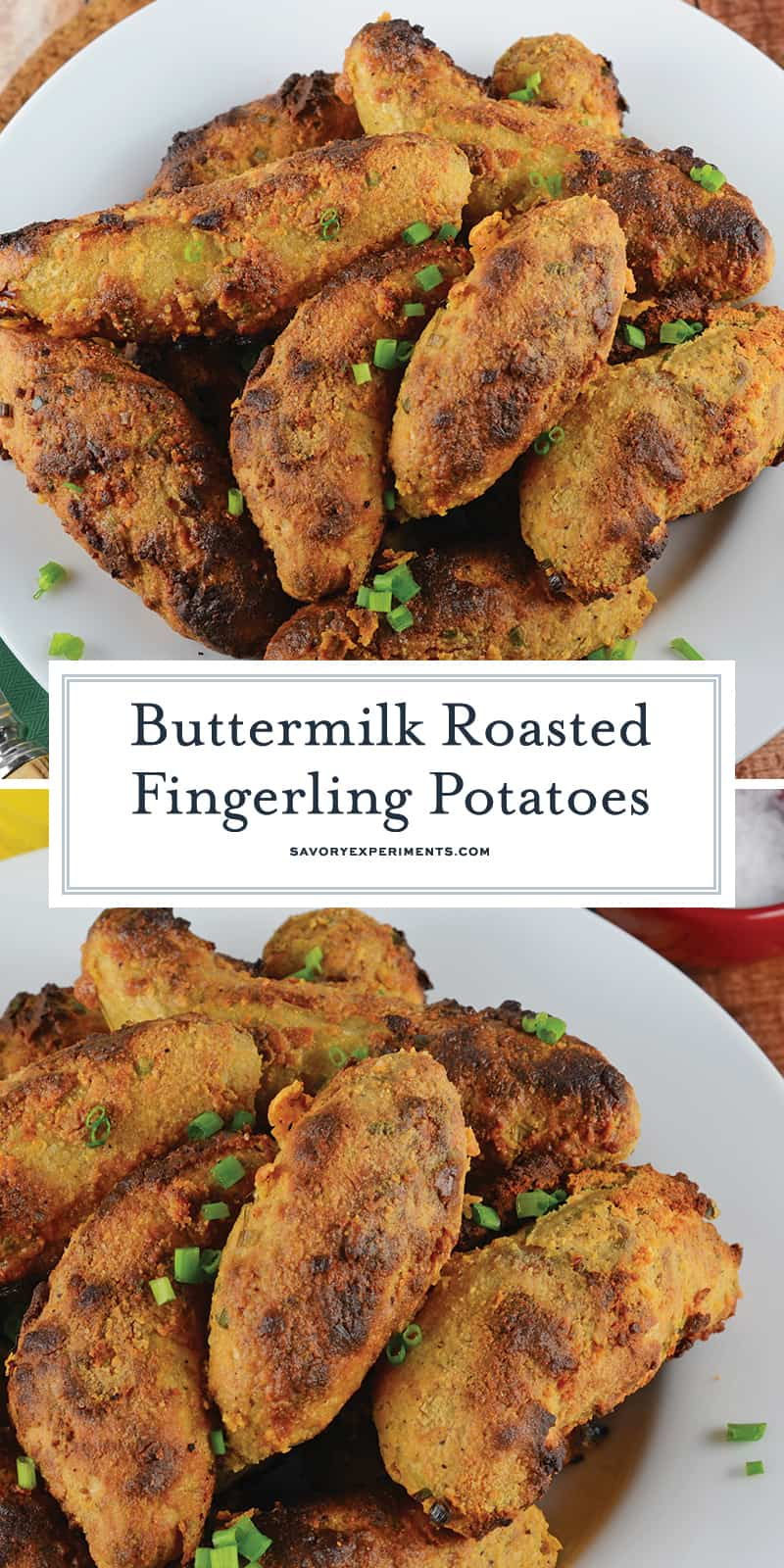 Buttermilk Roasted Fingerling Potatoes are the perfect side dish! This fingerling potato recipe is zesty and crispy covered in a yummy buttermilk mixture! #roastedfingerlingpotatoes #fingerlingpotatorecipe www.savoryexperiments.com