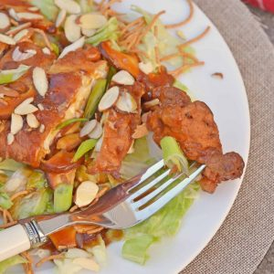 Chinese Almond Chicken close up
