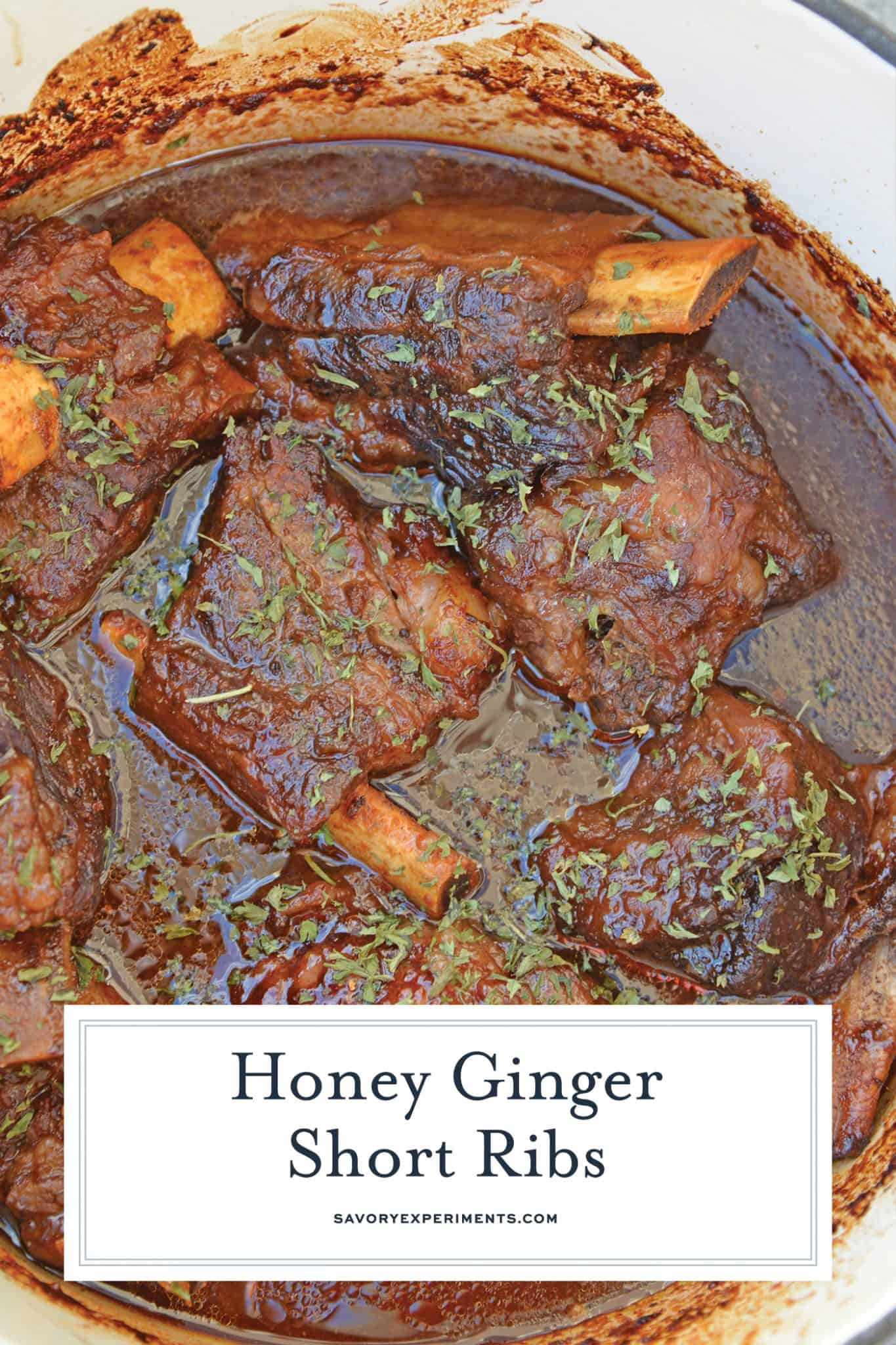 Honey Ginger Short Ribs are a zesty and sweet braised short rib recipe using traditional Asian spices. An easy recipe for fall-off-the-bone ribs. #braisedshortribs #shortribrecipe www.savoryexperiments.com