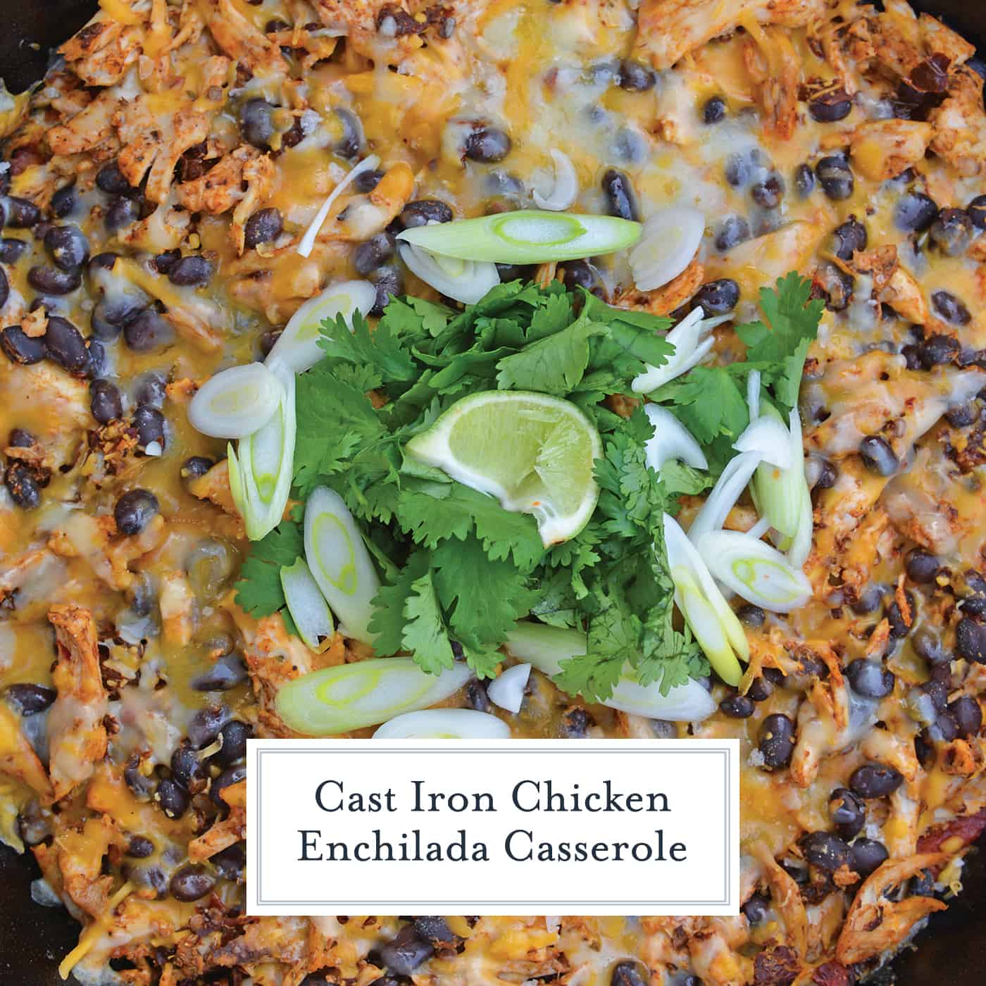 This Chicken Enchilada Casserole Recipe is a delicious casserole recipe loaded with a cornbread crust, chicken, beans, and cheese, all made in a cast iron skillet! #chickenenchiladacasserole #castironskilletrecipes www.savoryexperiments.com