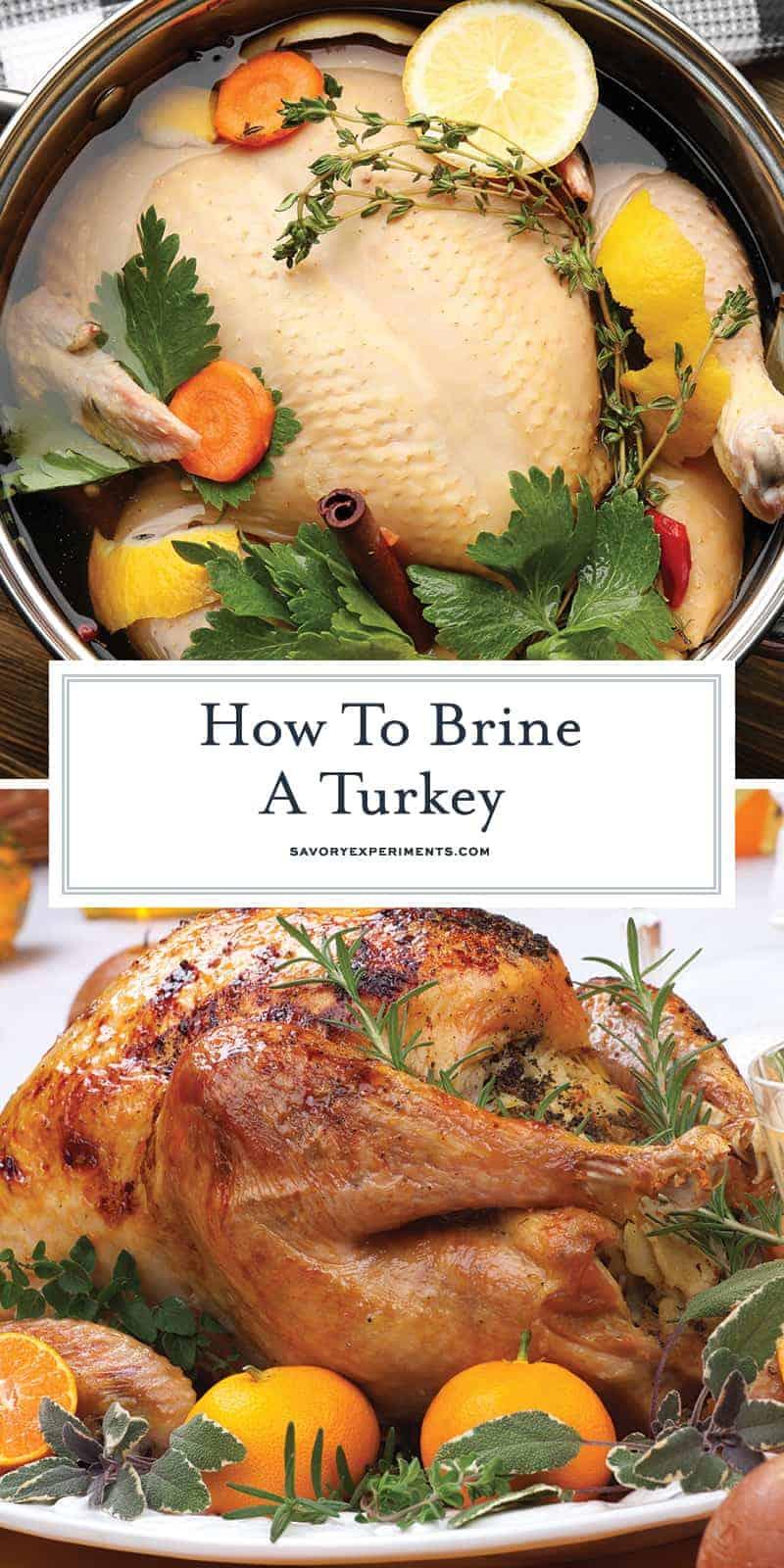 How to Brine a Turkey- a step-by-step guide for brining turkey, tips for a better turkey, how to brown turkey skin and a recipe for juicy turkey. #turkeybrinerecipe #thanksgivingturkeyrecipe www.savoryexperiments.com