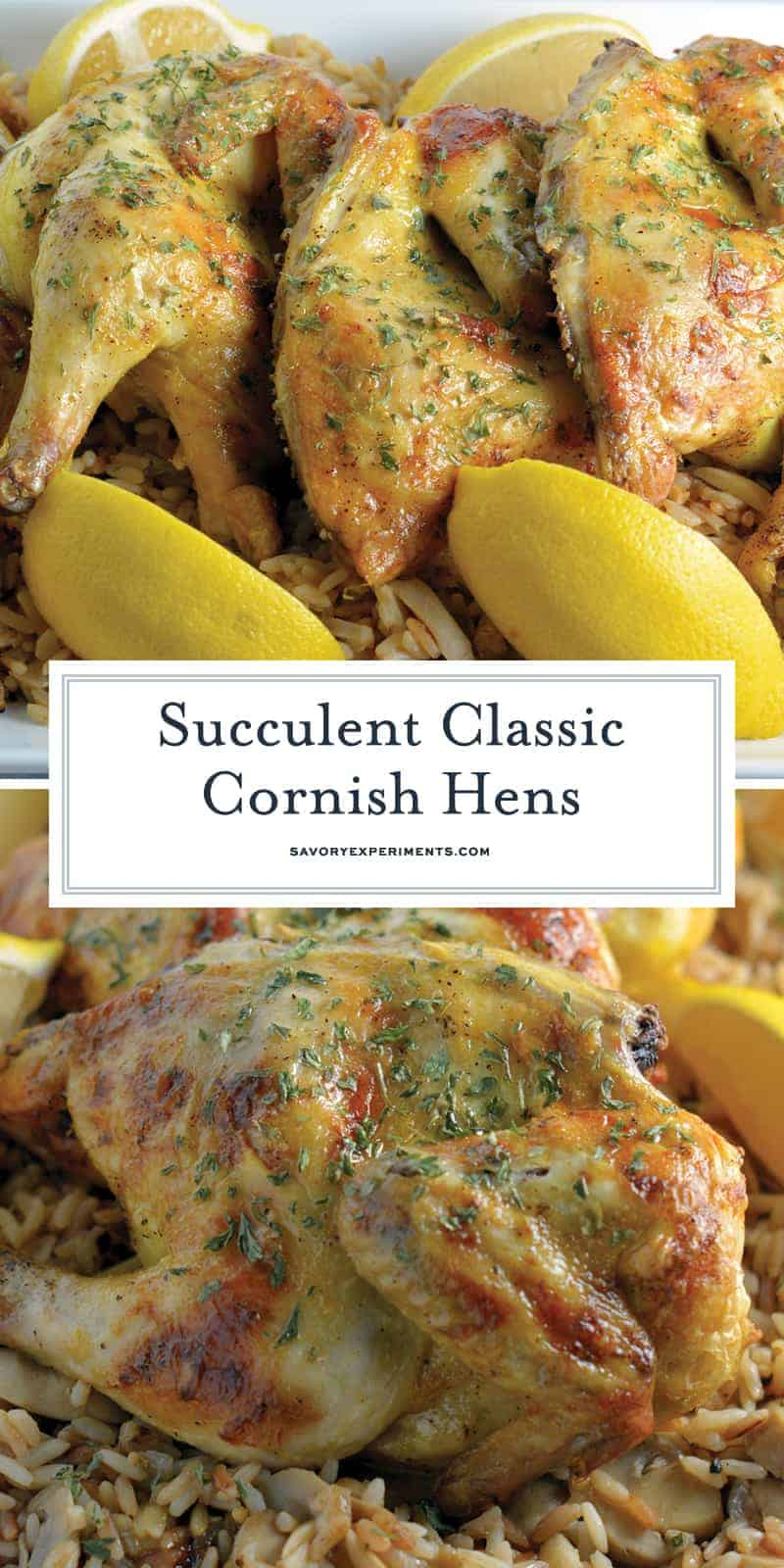 Classic Cornish Hens are perfect for holiday parties! Basted with a zesty butter sauce and ready in under 1 hour. Your family will LOVE them! #cornishhenrecipes www.savoryexperiments.com