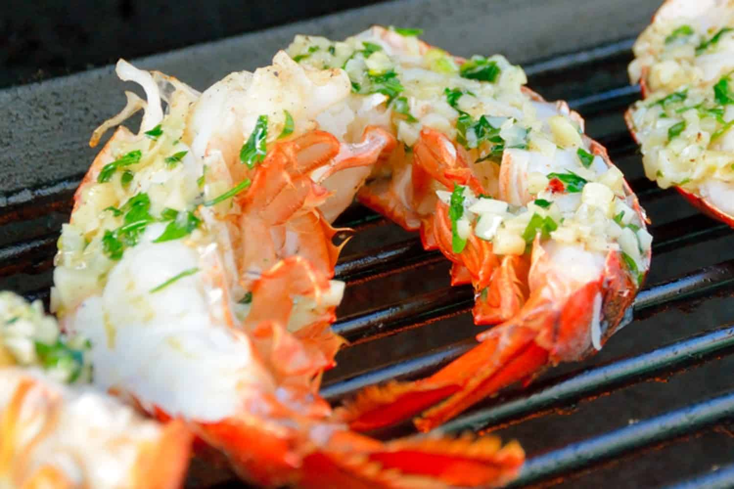 Close up of grilled lobster tails
