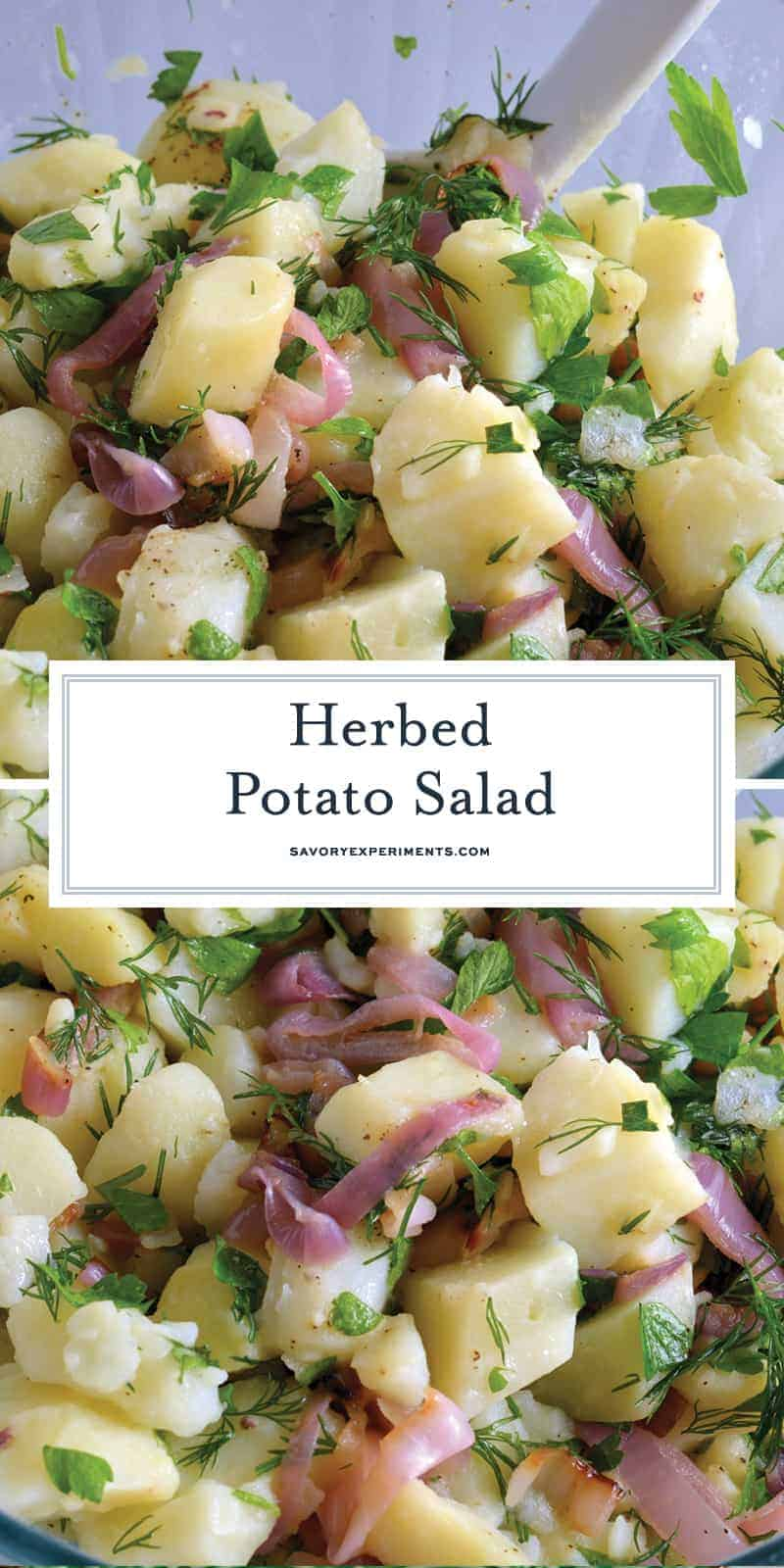 Herbed Potato Salad is mayo-free potato salad recipe that uses fresh herbs and mild white wine vinegar to add tangy flavor. Served chilled at your summer gathering! #nomayopotatosalad #potatosaladrecipe www.savoryexperiments.com