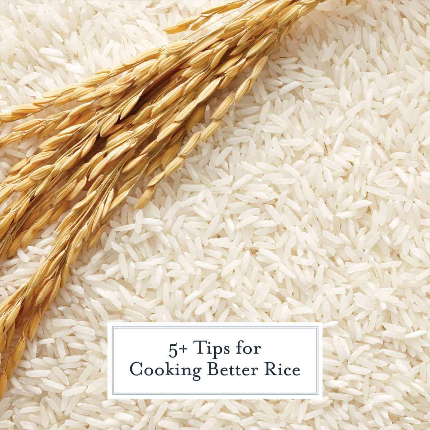 Looking for perfect rice? Here are 5+ tips that can be applied to any rice recipe for perfectly plump rice! #howtomakerice #cookingrice www.savoryexperiments.com