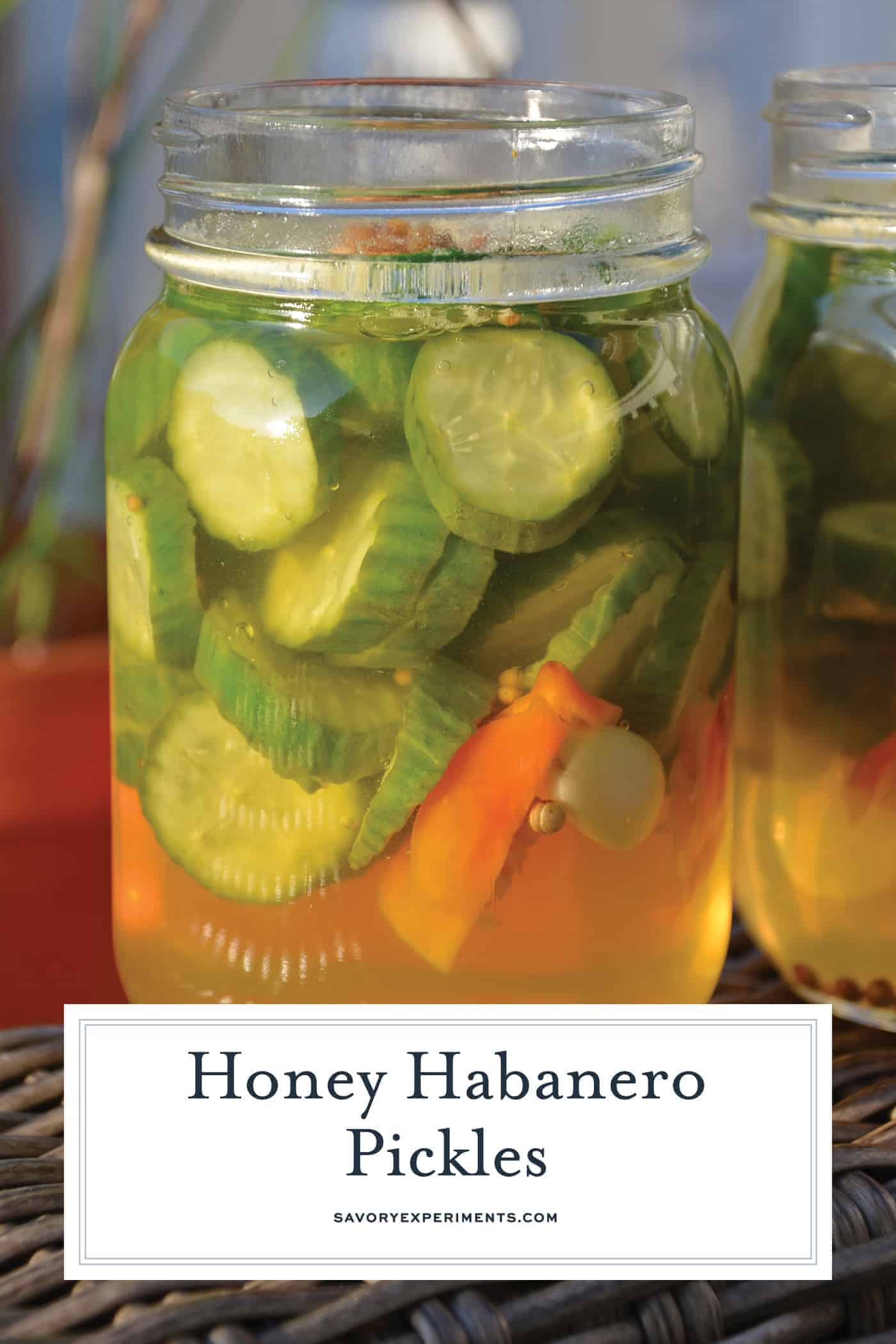 Honey Habanero Pickles are the best of both worlds, spicy and sweet. Eat them as a snack or pair them your favorite burger or hot dog. #homemadepickles #sweetandspicypickles #picklerecipe www.savoryexperiments.com