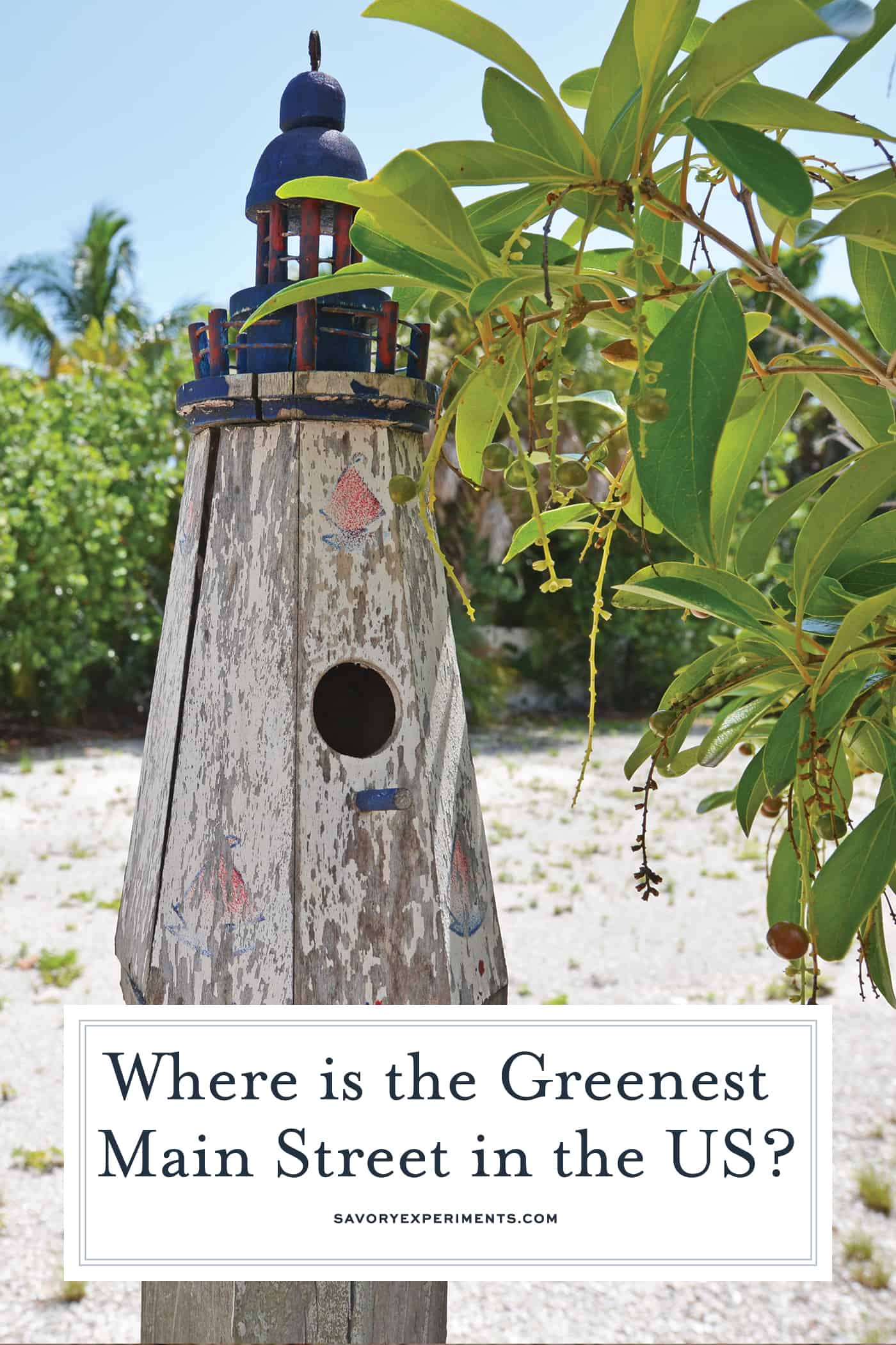Pine Avenue on Anna Maria Island is The Greenest Main Street in America #annamariaisland #visitflorida www.savoryexperiments.com