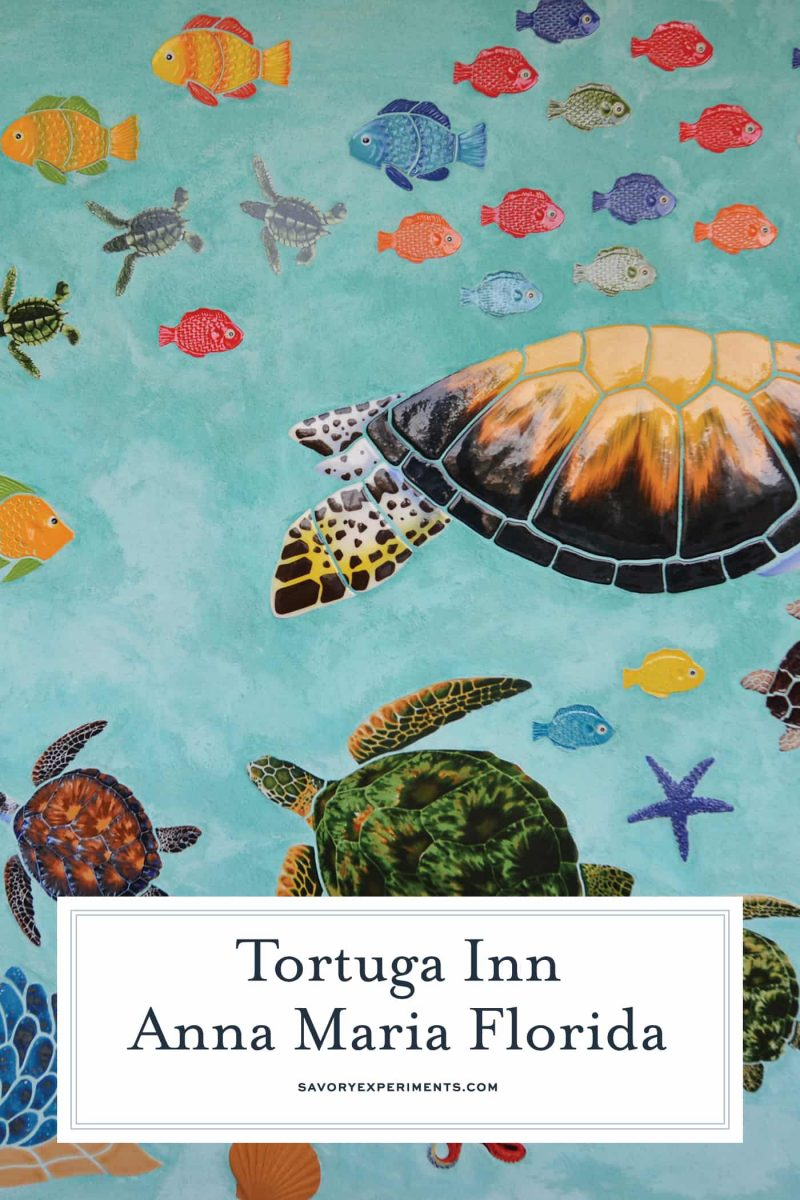 The Tortuga Inn is the best place to stay on Anna Maria Island, ideal for families and solo travelers, it has all the luxuries of home. #annamariaisland #visitflorida www.savoryexperiments.com