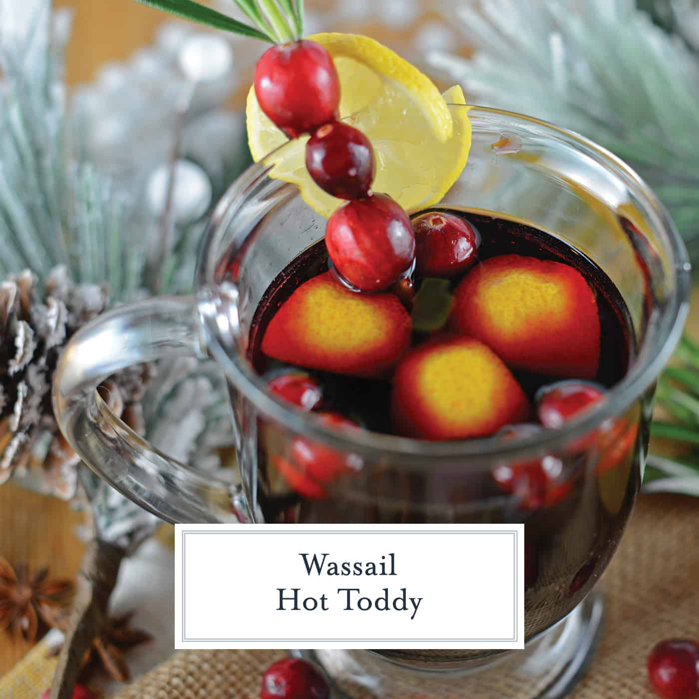 Wassail Hot Toddy should be on everyone's holiday cocktail list! It's so easy to make and perfect for holiday parties, you'll be the star of the show! #howtomakeahottoddy #whatisahottoddy #hottoddyrecipes www.savoryexperiments.com