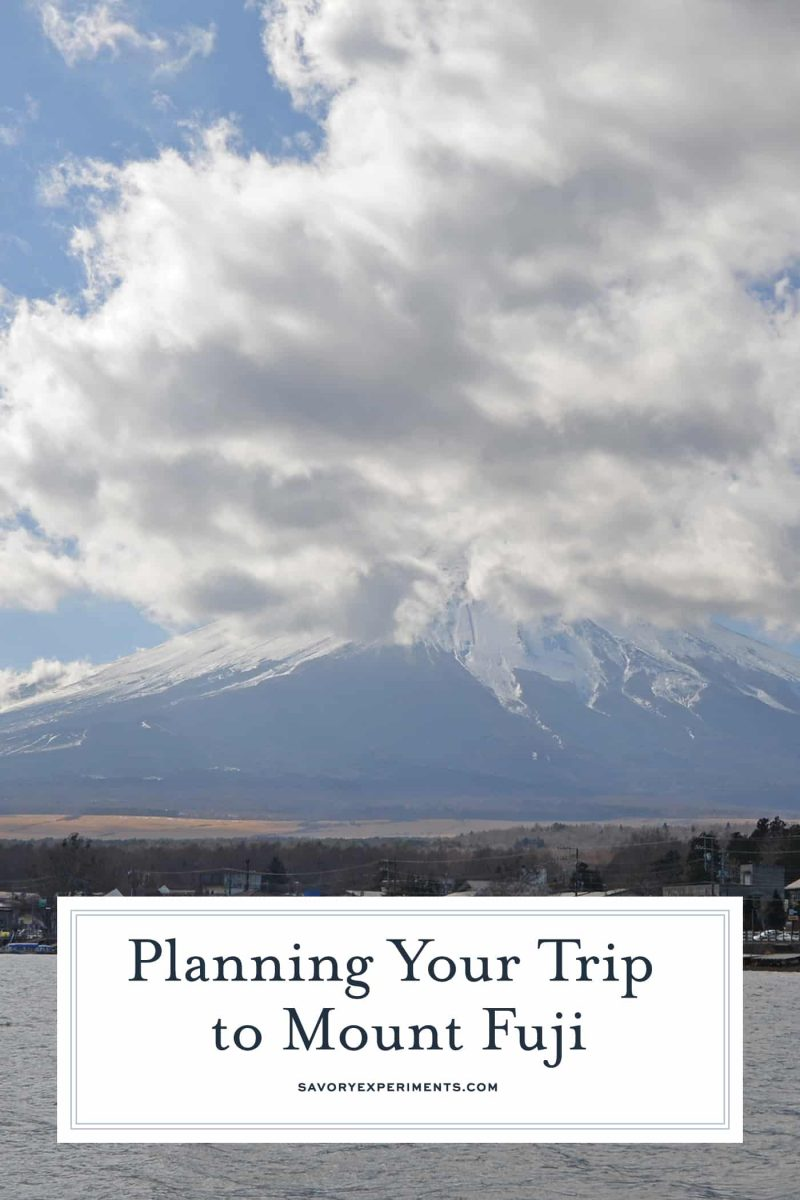 Easy tips on how to get the most out of your day trip from Tokyo to Mt. Fuji, Japan's active volcano and tallest peak. #tokyo #japan #myfuji www.savoryexperiments.com