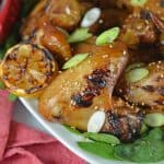 Lemon Garlic Yakitori Wings