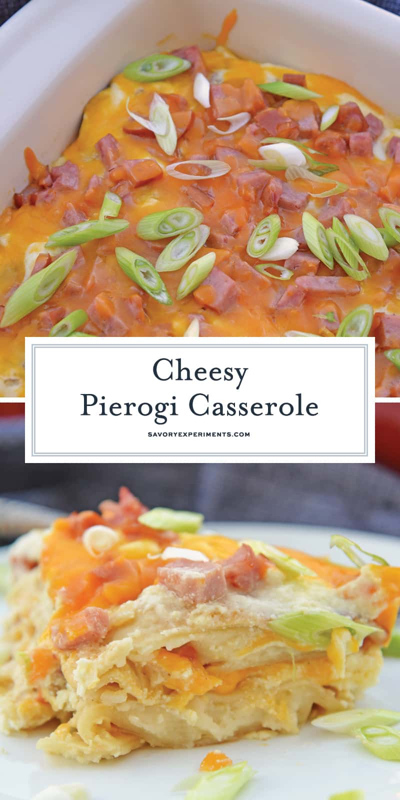 Pierogi Casserole takes your favorite pierogi and layers them with creamy ricotta, smoky kielbasa and cheddar cheese. A family favorite and great for potlucks and parties! #pierogicrecipe #casserolerecipes www.savoryexperiments.com