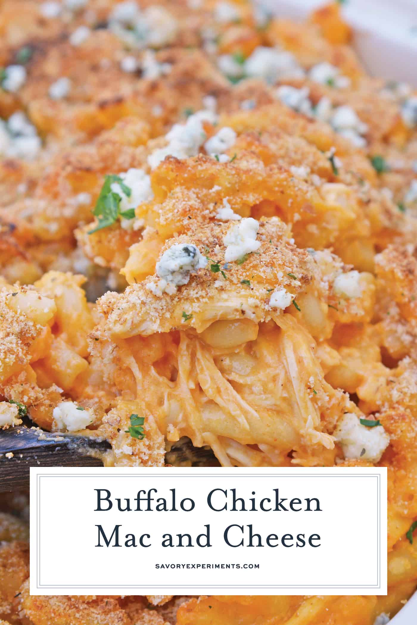 Buffalo Chicken Mac and Cheese is a quick and spicy baked mac and cheese recipe the whole family will love. Perfect as a potluck recipe or for a BBQ side dish! #buffalochickenmacandcheese #macandcheese www.savoryexperiments.com