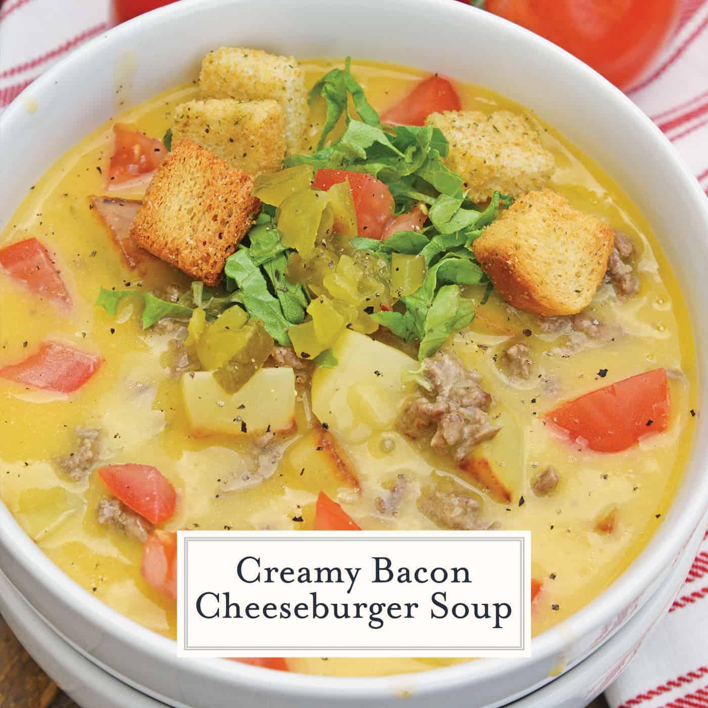 A bowl of hamburger soup