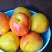 Blue bowl full of peaches