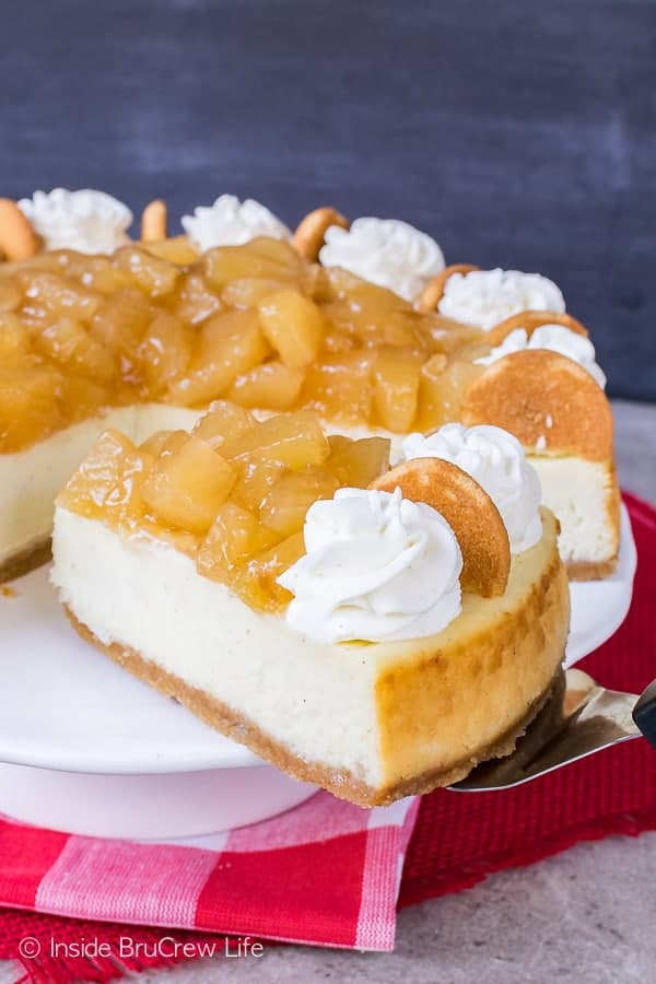Vanilla bean cheesecake topped with apples