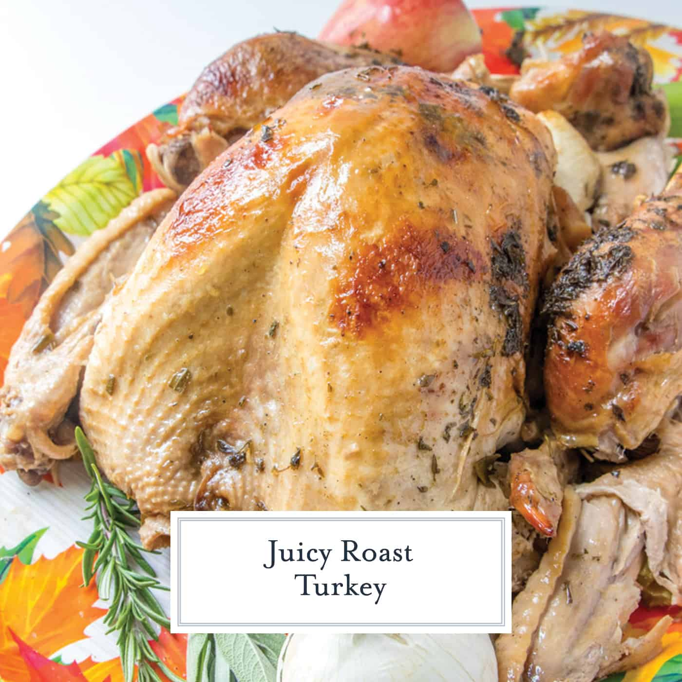 Juicy Roast Turkey is easier than you think with my buttery recipe, a bottle of bubbles and fresh herbs. The best juicy turkey recipe ever! #juicyroastturkey #bestturkeyrecipe #thanksgivingturkey www.savoryexperiments.com