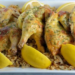 Cornish hens on a white plate with lemons - Christmas main dishes