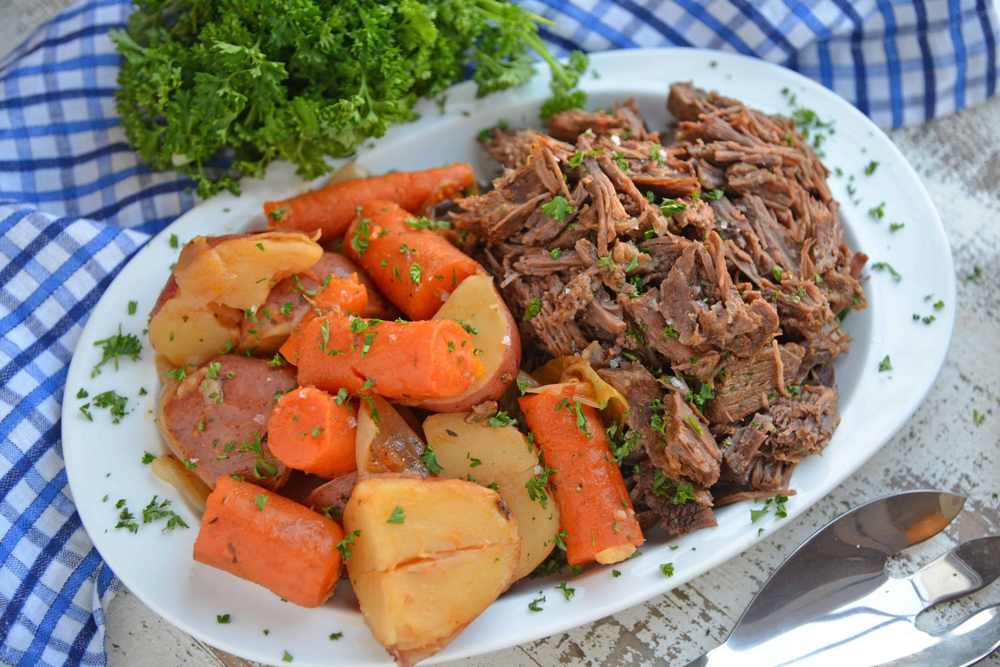White Platter with Pot Roast, Carrots and Potatoes
