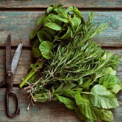 Freshly cut herbs