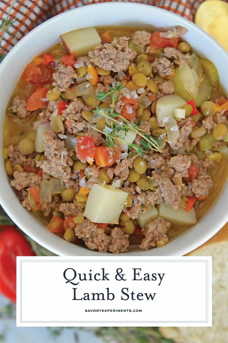Overhead ground lamb stew for Pinterest