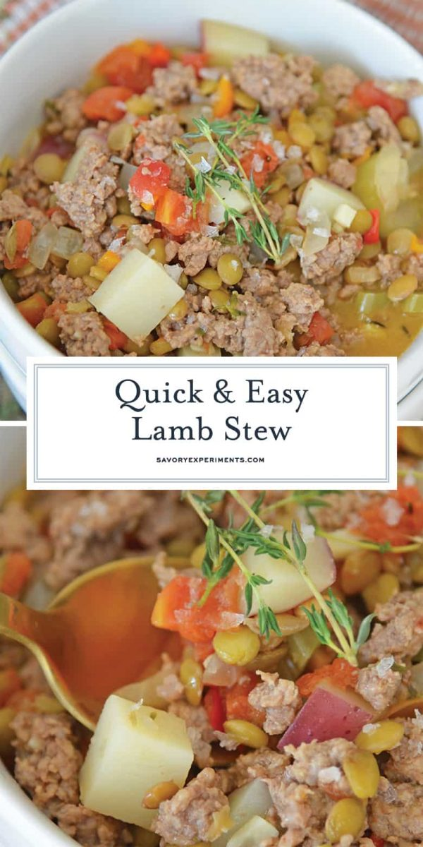 Ground Lamb Stew in a bowl for pinterest