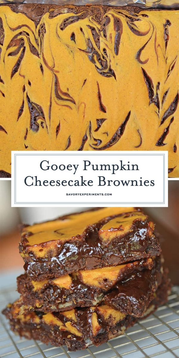 Pumpkin Cheesecake Brownie Swirls for Pinterest