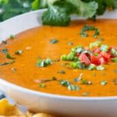 A bowl chili cheese dip