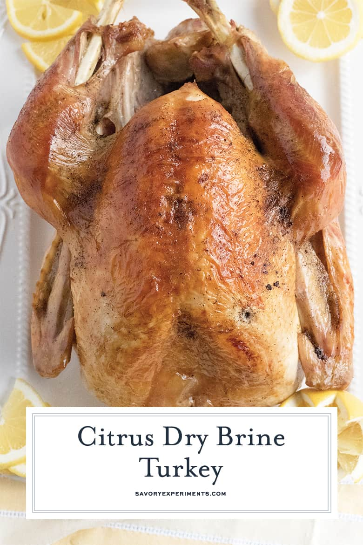 dry brine for whole turkey