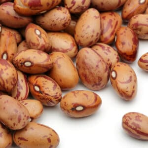 A pile of raw beans
