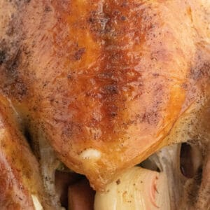 close up of browned turkey
