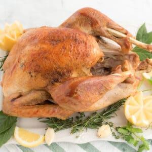 whole turkey on a serving platter