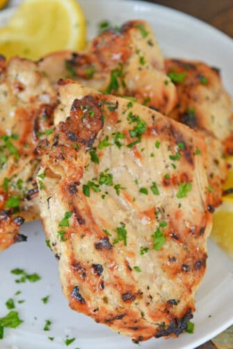 white plate of grilled chicken