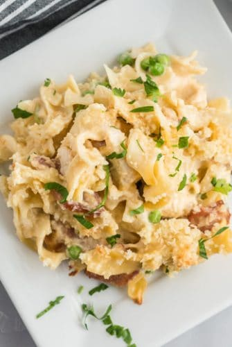 white plate with chicken noodle casserole
