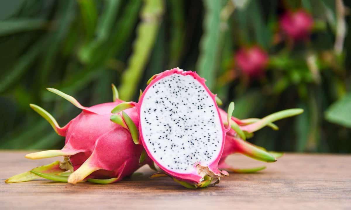 pink dragon fruit cut in half