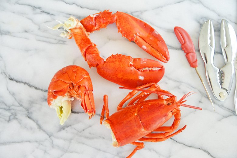 lobster in four pieces