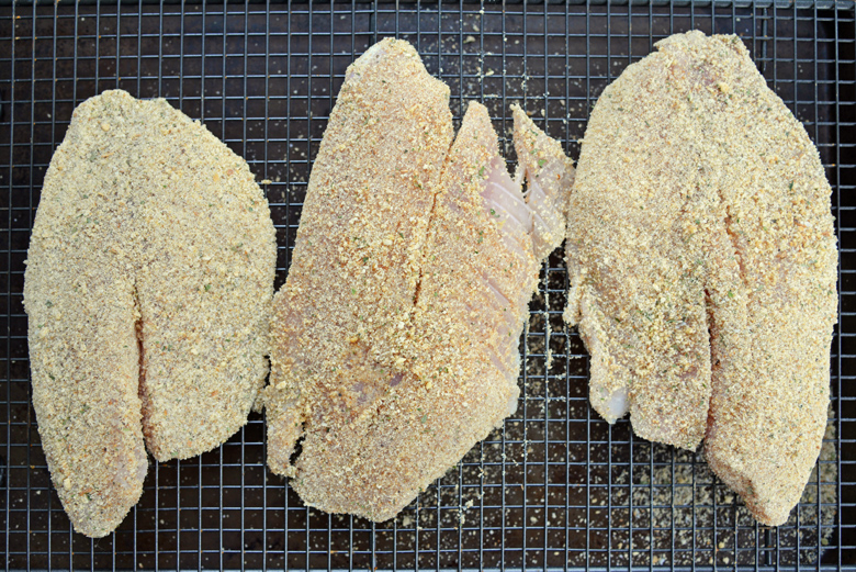 uncooked tilapia filets with parmesan breading