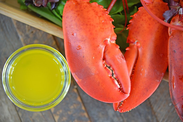 steamed lobster claws with clarified butter