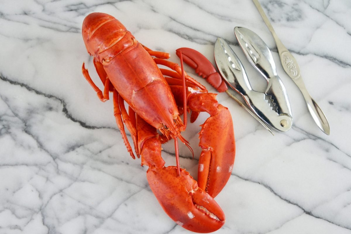 whole lobster with lobster tools on a marble slab