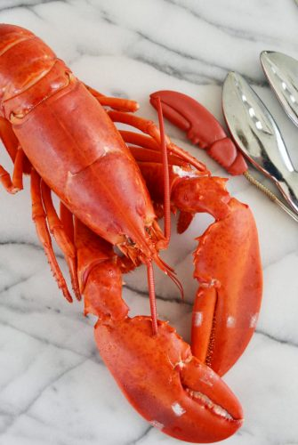 whole steamed lobster on white marble background
