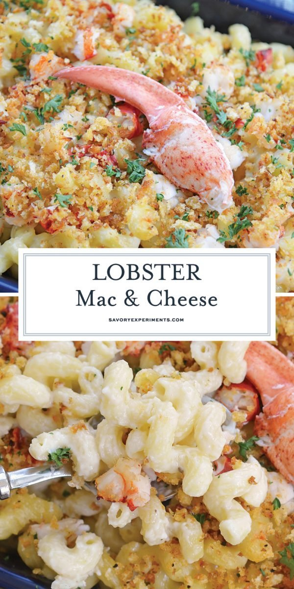 lobster mac and cheese for pinterest