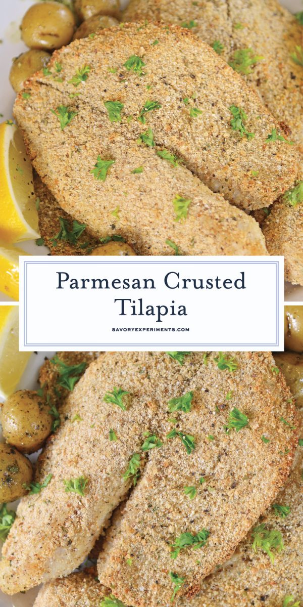 parmesan crusted tilapia for pinterest