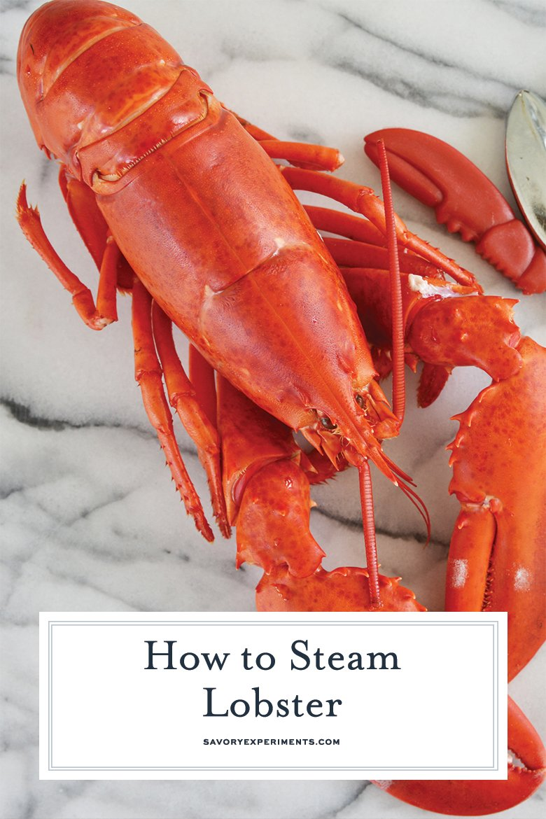 close up of steamed lobster for pinterest