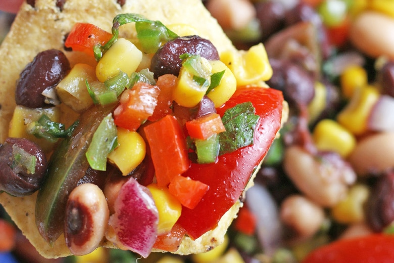vegetable dip on a tortilla chip