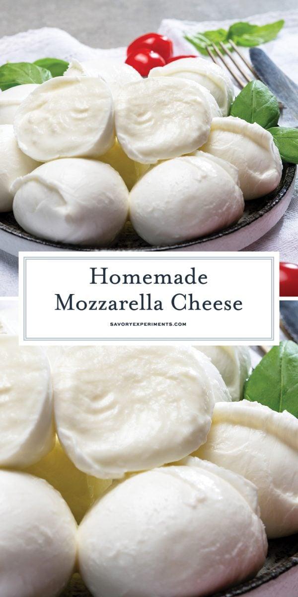 homemade mozzarella for pinterest