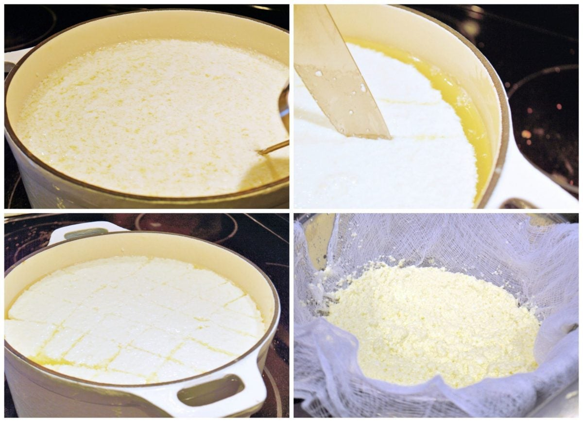 collage of cheese making steps