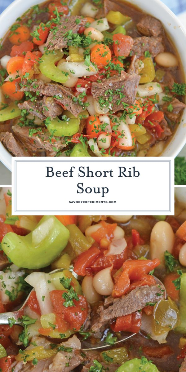 short rib soup for pinterest