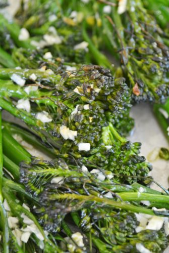 close up of cooked broccolini